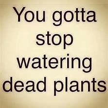 stop-watering