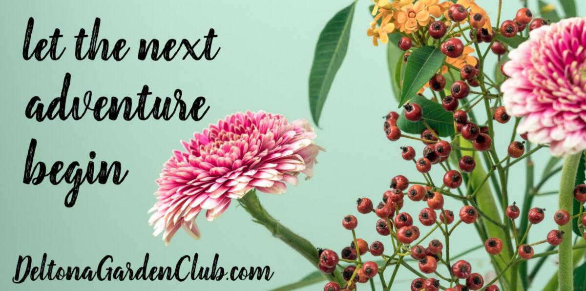 Deltona Garden Club